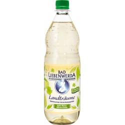 Bad Liebenwerda Landträume Apfel-Malve-Hibiskus PET 12 x 1L