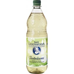 Bad Liebenwerda Teeträume Apfel-Zitrone-Pflaume Grüntee PET 12 x 1L