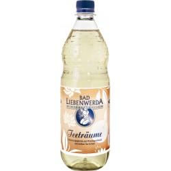 Bad Liebenwerda Teeträume Pfirsich Weißer Tee 12 x 1L